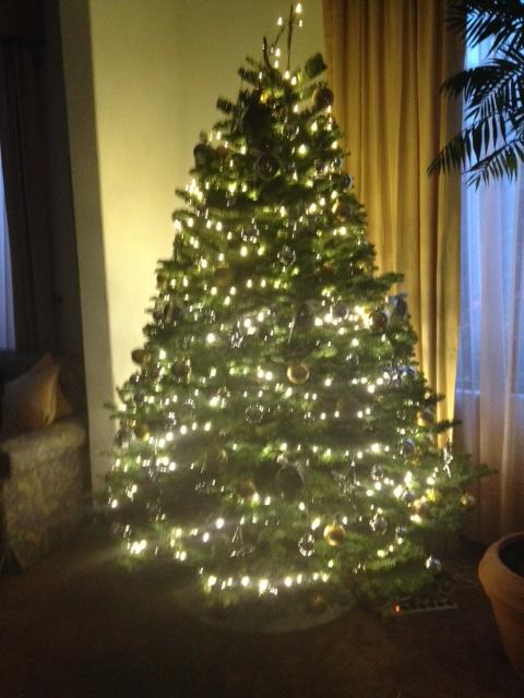 Árbol navidad Coy